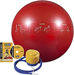 Red GoFit Pro exercise ball is one of the best gifts for freelancers