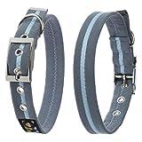 Steckler Ltd Ta Oscar & Hooch Dog Collar Ocean Breeze Blue, transparent
