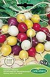 Germisem Color Mix Semillas de Rábano 10 g (EC9036)