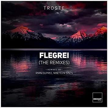 Flegrei [The Remixes]