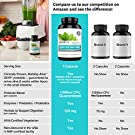 Zenwise Health Digestive Enzymes Plus Prebiotics & Probiotics Supplement, 180 Servings, Vegan Formula for Better Digestion & Lactose Absorption with Amylase & Bromelain, 2 Month Supply #3