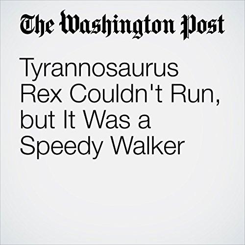 Tyrannosaurus Rex Couldn't Run, but It Was a Speedy Walker copertina