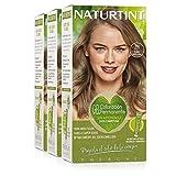 Naturtint Coloración 7N Rubio Avellana. Tinte sin Amoniaco. 100% Cobertura de canas e Hidratación. Ingredientes y Aceites Vegetales. Color Natural y Duradero. Pack de 3