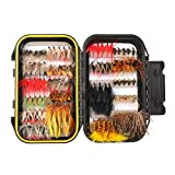 FISHINGSIR 100PCS Fly Fishing Flies Kit Assorted Flies Trout Flies Fly Fishing Lures with Waterproof Fly Box