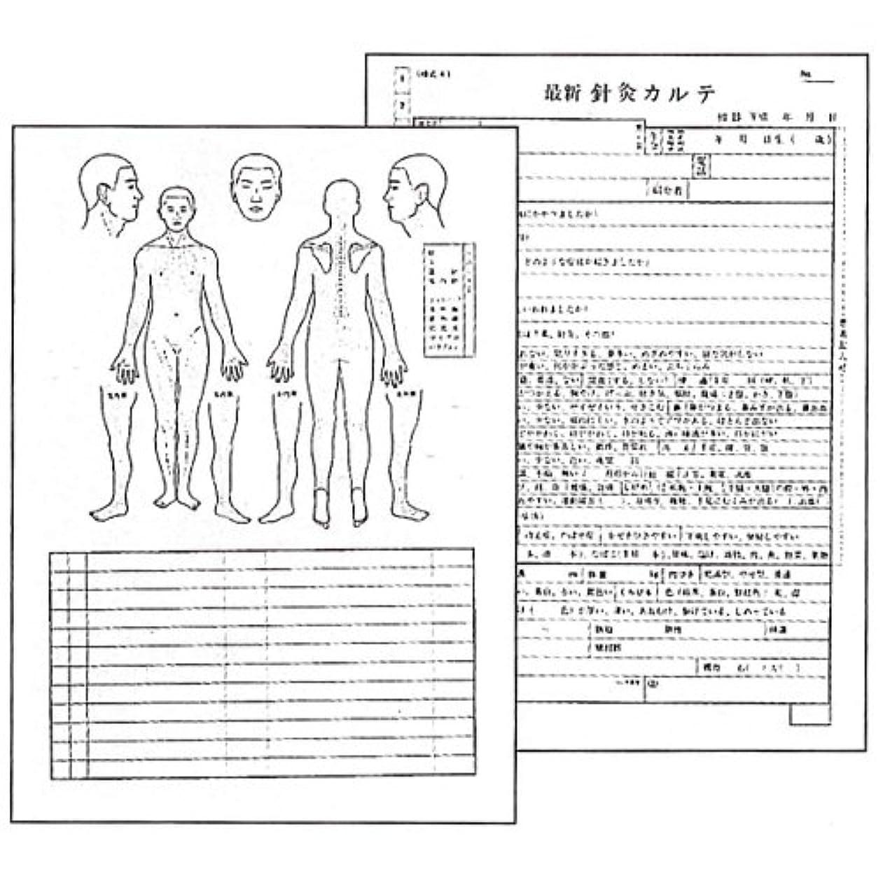 ランチョン前任者路面電車最新針灸カルテ(鍼灸カルテ)(A4)100枚1組 (SS-104)