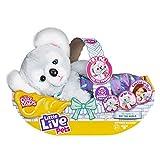 Little Live Pets 26233 Cozy DOZYS Koala