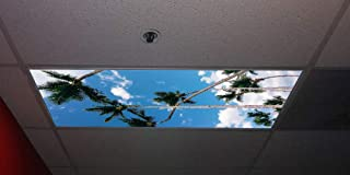 Tropical Palms Skypanels - Replacement Fluorescent Light Diffuser