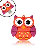 QICAIHU Novelty Big Eyes Owl Shape Design 16GB USB 2.0 Animal Flash Drive Cute Memory Stick Thumb Drive Data Storage Pendrive Cartoon Jump Drive Gift