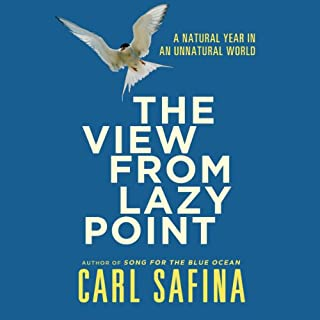 The View From Lazy Point cover art