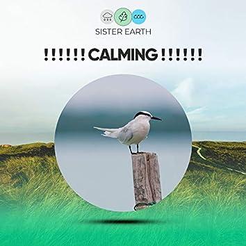 ! ! ! ! ! ! Calming ! ! ! ! ! !
