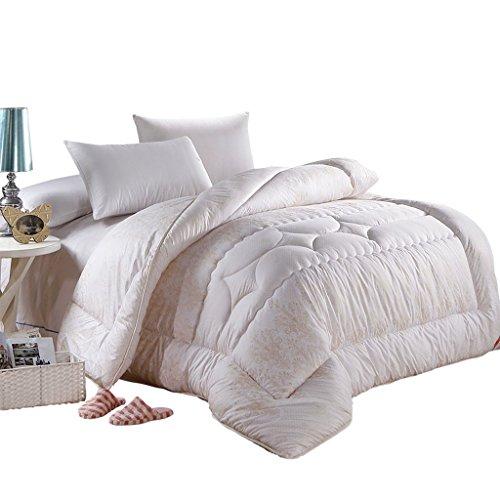 MMM Edredon d'hiver Chambre à coucher individuelle plus épais Conserver une literie chaude double (taille : 220 * 240cm(3.4kg))