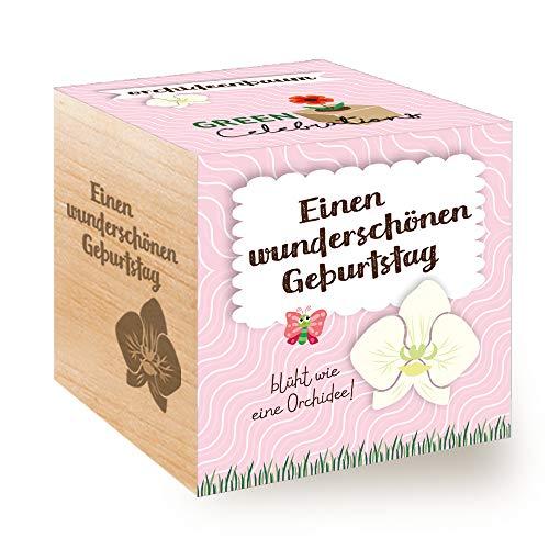 Feel Green Celebrations Ecocube, Orchideenbaum, Holzwürfel Mit Lasergravur «Einen Wunderschönen Geburtstag», Nachhaltige Geschenkidee, Anzuchtset, Made in Austria