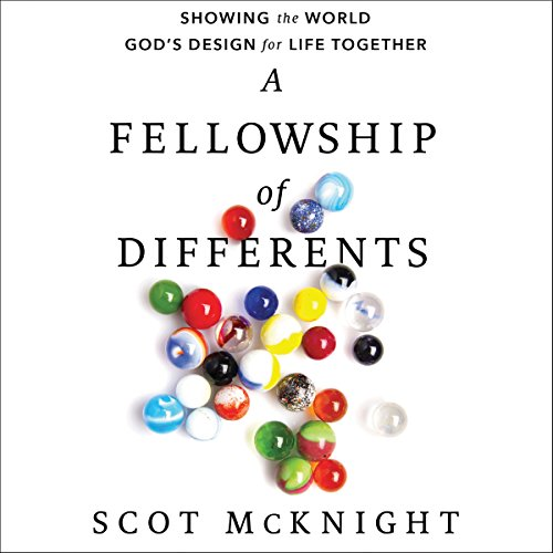 A Fellowship of Differents audiobook cover art