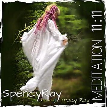 Meditation 11 11 (feat. Tracy Ray)