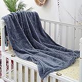 Kinwal Plush Fleece Baby Blankets for Boys, Girls, Kids, Toddler, Infant, Fuzzy Throw Blanket Fluffy Cozy Nap Blanket Soft Warm Blanket for Crib, Stroller, Sofa, Travel, Outdoor (Haze Blue, 30'x40')