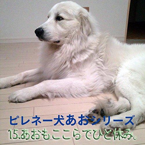 『ピレネー犬あおシリーズ 15.ここらでひと休み。』のカバーアート