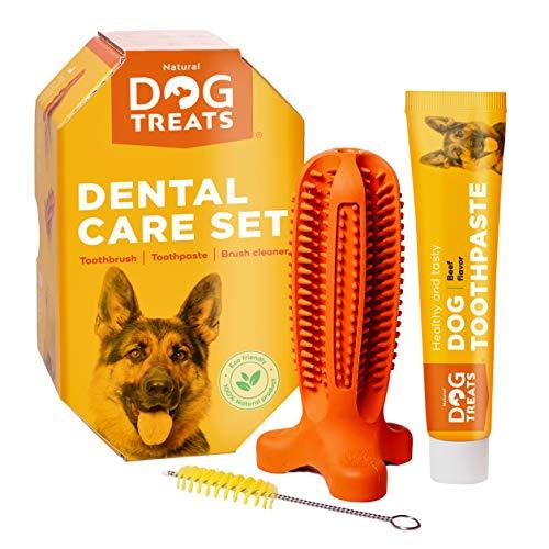 Natural Dog Treats Cepillo de Dientes y Dentífrico Set para Perros, 100% Natural Caucho Dog Brushing Stick, Juguete para Masticar, Tall Medium
