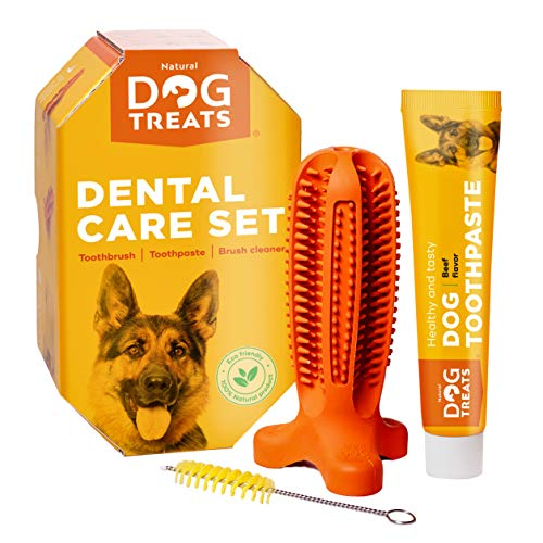 Natural Dog Treats Toothbrush Stick and Toothpaste Beef Flavor Dental Care Cleaning Set, 100%...