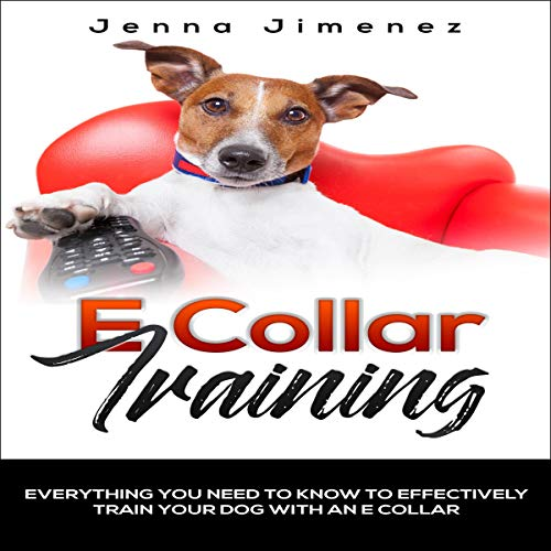 E Collar Training audiobook cover art