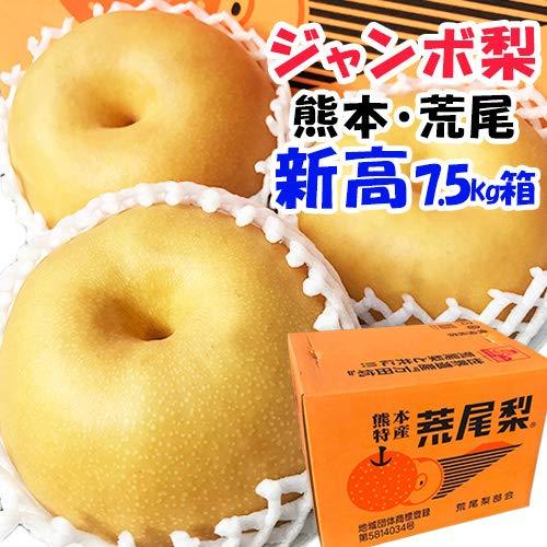 【 熊本 荒尾 】 新高 ジャンボ梨 高級梨 箱込 約7.5kg(6〜12玉入り)