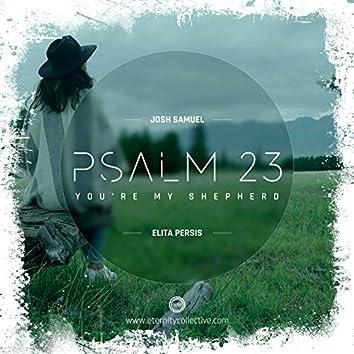 Ps 23(You're My Shepherd) (V2.0)