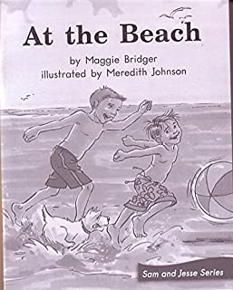 AT THE BEACH (My Take-Home Book: Blue System, Book 47, Level G) 6 PAK