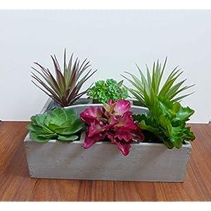 CHSGJY 6 Artificial Mini Desert Succulent Plants Landscape Home Room Balcony Decor