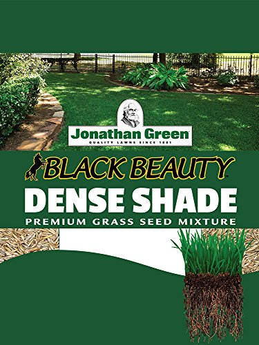 Jonathan Green 10610 Dense Shade Grass Seed Mixture,...