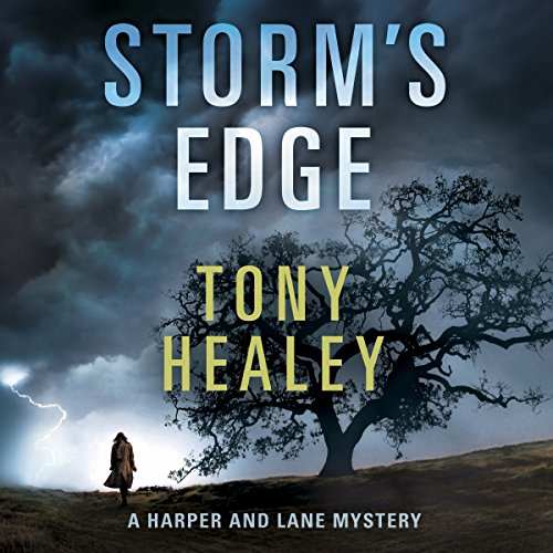 Storm's Edge audiobook cover art