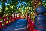 500個のジグソーパズル、子供と大人のための岡崎城橋木製パーソナライズされた組み立てジグソー楽しいゲーム