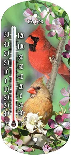Cardinal Window Thermometer product image