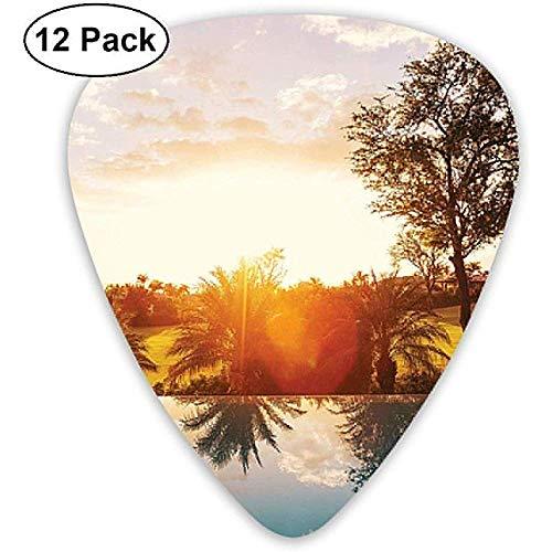 12er Pack Swimmingpool bei Sonnenuntergang Tropen Palmen Plektren Komplettes Geschenkset für Gitarristen