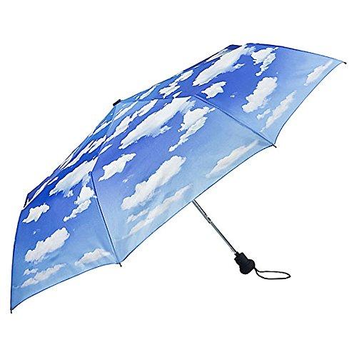 VON LILIENFELD Regenschirm Taschenschirm Stabil Leicht Auf-Automatik Damen Herren Motiv Wolken Bayrischer Himmel