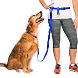 Adjustable Hands Free Dog Leash, Great Waist Leash for Running, Jogging And Training Servive Dog Made in USA by The Buddy System, Large, Royal Blue