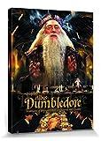Harry Potter 1art1 Professor Albus Dumbledore Bilder