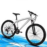 LOISK 26 Pulgadas Bicicletas montaña for Adultos Bike Mountain Trail 21/24/27 Speed Variable bicis de Carreras Velocidad for Hombres y Mujeres,Plata,21 Speed