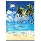 Fondo tropical de playa – Fondo de fotografía – ideal para estudio, cabina, fiesta, foto, boda, uso comercial, 4.9 x 7.2 pies