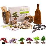 BONSAI CULTIVA 6 DE TUS PROPIOS árboles de bonsai. Kit de germinación JUEGO DE REGALO DE JARDINERÍA Con 3 herramientas principales, juego de regalo premium, paquete de gran valor, idea de regalo única