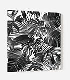 Impression Murale® - Fond de hotte, crédence de cuisine en Verre de synthèse avec fixation adhésive'Feuilles tropicales noir et blanc' L. 60 x H. 70 cm - Epaisseur 4 mm