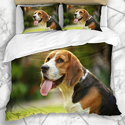 Soefipok Duvet Cover Sets Breed Green Happy Beagle Dog Family Outdoors Foxhound Brown Hunt Park Puppy Design Microfiber Bedding with 2 Pillow Shams