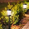 HONGMEI 6 Pack Solar Pathway Lights,Waterproof auto on & Off LED Solar Lights Outdoor,8 Hours Long Last Solar Powered Warm Light for Garden, Landscape, Path, Yard,Walkway,Sidewalk,Decorative