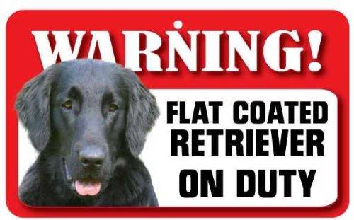 Instant Gifts Dog Signs Flat Coated Retriever Chien de Mascotte Signe – Carte laminé