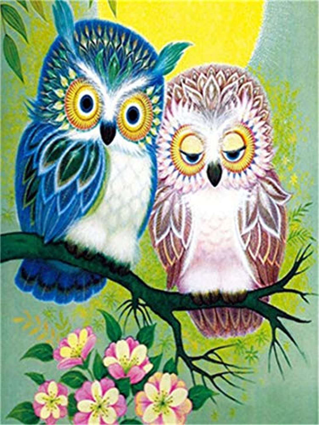 Paint by Numbers Kits DIY Oil Painting Home Decor Wall Value Gift - Two Owls 16X20 Inch (Frame)