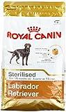 ROYAL CANIN Labrador Adult STERILISED, 1er Pack (1x 3kg)