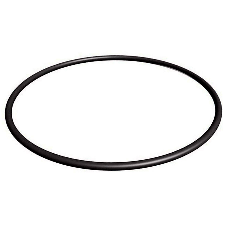 U9-228A Pump Seal Plate O-Ring for Sta Rite Max-E- Pro O-240