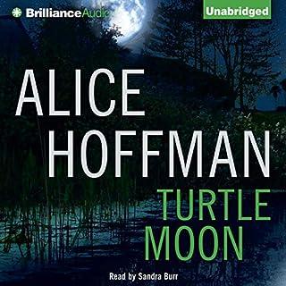 Turtle Moon audiobook cover art