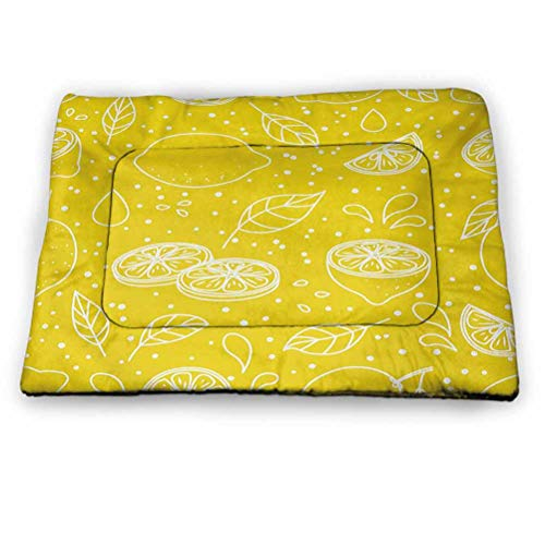 prunushome Pet Cushion Dog Bed Urban Dog Bed Crate Mat Melbourne Cityscape Modern Australia Architecture Buildings Metropolis Dramatic Sky Ideal for Dog Crates Multicolor (18