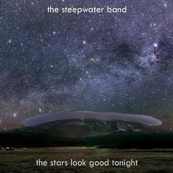 The Stars Look Good Tonight - Single
