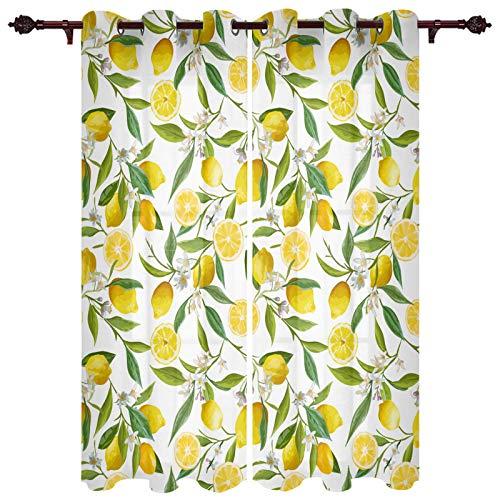 Curtains 2 Panel Set, Green Brazil Floral Pattern Lemon Fruits Flowers Leaves Exotic Kitchen Window Grommet Treatment Set for Living Room Bedroom,40 x 63 Inch