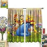DRAGON VINES Winnie The Pooh Eeyore Tigger - Cortinas opacas con aislamiento...
